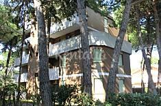 Apartamento de 2 habitaciones a 400 m de la playa Udine