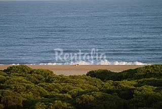 Apartamento para 4-6 personas a 100 m de la playa Huelva