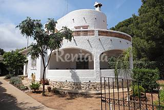 Villa a 200 m. del mar y 500 m2 de jardín. Wifi Alicante