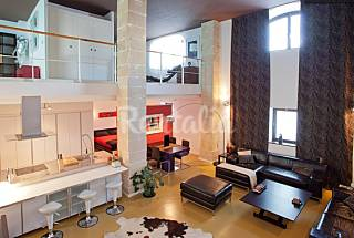 Lux & Huge Loft 2-6 people in the centre of Jerez Cádiz