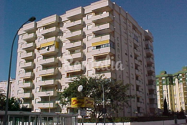 Apartamentos en gandia a 350 metros de la playa grau i platja gandia valencia - Apartamentos en gandia playa ...