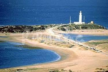 Bungalows frente bosque 3.5 km playa El Palmar. - El Palmar (Vejer de la Fron...
