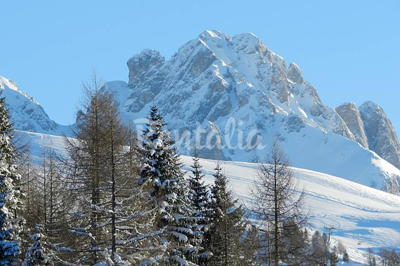 Apartment with 2 bedrooms in Dolomites  Trentino