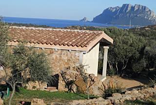 Villa en alquiler a 2 km de la playa Olbia-Tempio