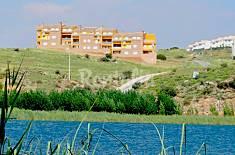 4 Apartamentos  con piscina Ciudad Real