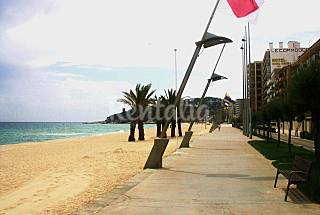 Appartement pour 3-4 pers. 50 mts. de le plage Gérone