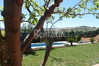 Villa for rent in Alhendín Granada