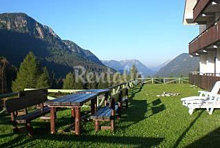 appartamento nelle Dolomiti: magnifiche escu...