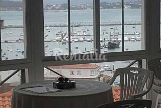 Apartment for 4 people and studio for 2 only 300 meters from the beach Pontevedra