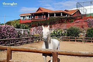 Majestuosa Villa para toda la Familia ^^ Gran Canaria