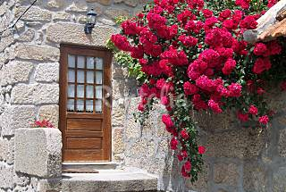 Casa en alquiler con jardín privado Viseu