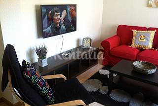 Nice and very comfortable apartment Asturias
