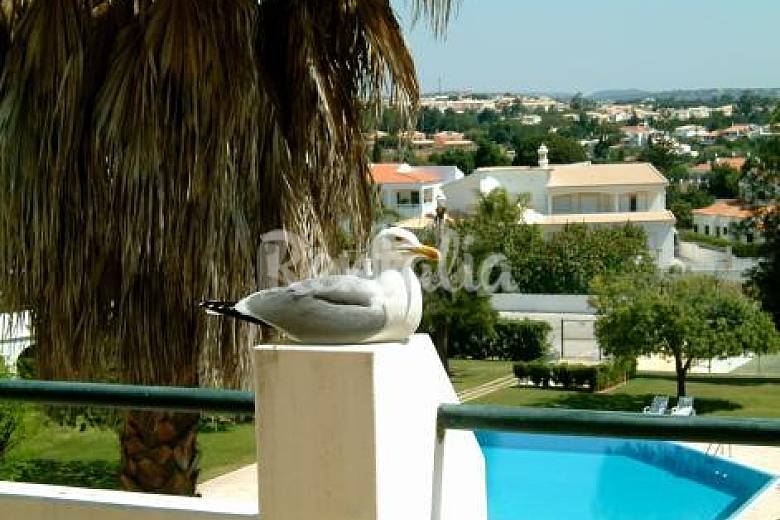2 apartments for rent only 750 meters from the bea Algarve-Faro