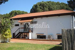 Villa for rent on the beach front line Latina
