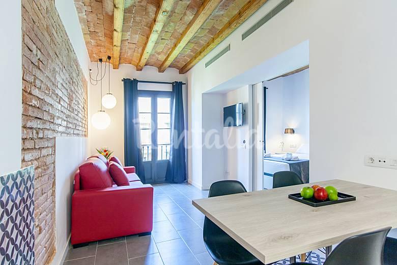 Terraza Salón Barcelona Barcelona Apartamento
