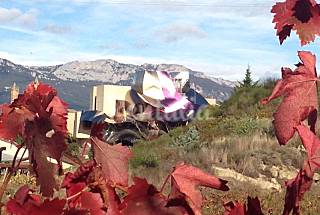 House for rent in mountain environment Rioja (La)