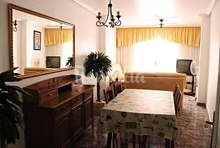 Alquiler vacaciones apartamentos y casas rurales en guardamar del segura alicante - Pisos baratos en guardamar del segura ...