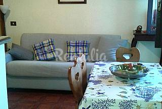 Apartment with 1 bedrooms in Rome Rome