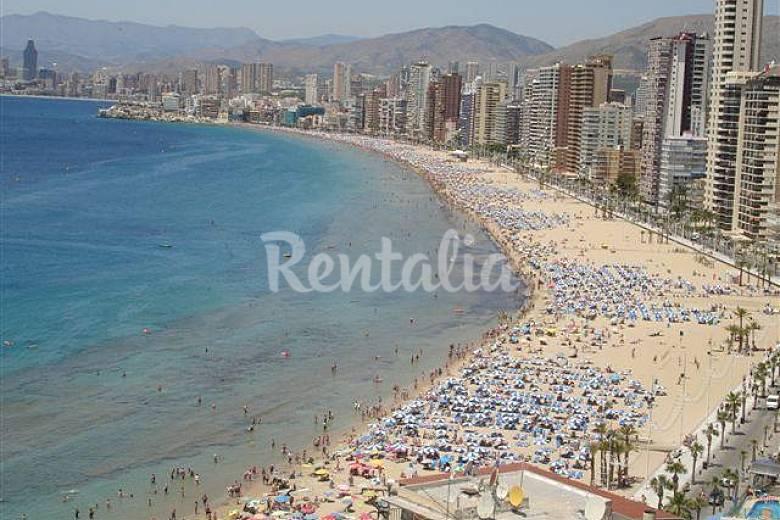 Wohnung mit 1 Zimmern direkt am Strand Alicante