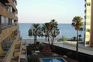 Apartment for rent on the beach front line Alicante