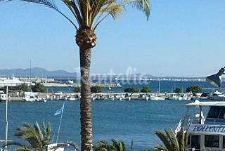 Puerto de Alcudia;primera linea de playa  ,wifi Mallorca