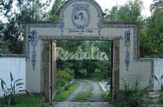 Quinta da Olga com 3 quartos com piscina Aveiro