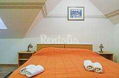 Apartment for 6 people in Southeast Slovenia Southeast Slovenia