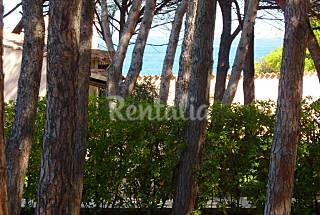 Appartamento per 4-6 persone a 150 m dalla spiaggia Olbia-Tempio