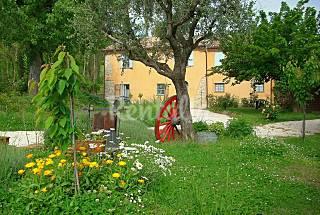 Casa dei ciliegi  Appartamento piano terra Pesaro e Urbino