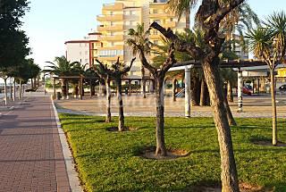 Apartamentos en 1ª línea. Playa Norte Castellón