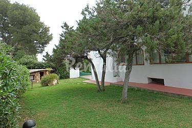 Villa para 6 9 personas a 500 m de la playa cala 39 n bosch for Jardin hormiguita viajera villa bosch