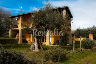 Villa de 4 habitaciones en Montefino Teramo
