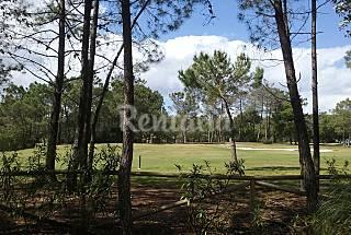 Apto xa 4  Islantilla (campo-golf) - VFT/HU/...