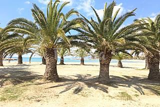Villa para 6-8 personas a 250 m de la playa Tarragona