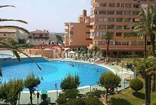 Apartamento de 1 habitaciones a 700 m de la playa Girona/Gerona