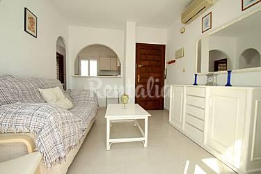 Apartamento en alquiler con a c cerca de la playa torrevieja alicante costa blanca - Alquilar apartamento en torrevieja ...