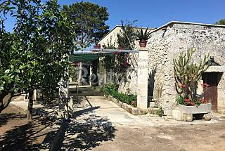 House for 2-4 people 13 km from the beach Lecce