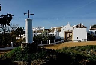 Villa for 20 people with swimming pool Cádiz