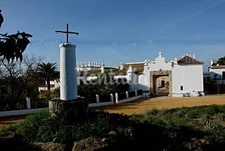 Magnifica Hacienda de Olivar para 20 personas  Cádiz