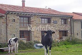 House for 14 people 5 km from the beach Asturias