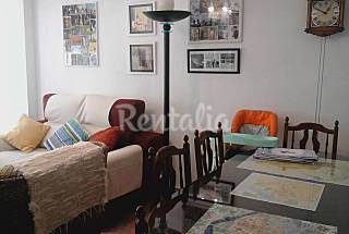 Apartment for 2-3 people in the centre of Salamanca Salamanca