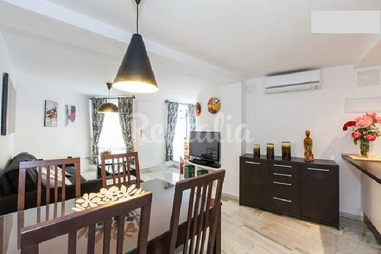 Apartamento en alquiler en sevilla centro sevilla for Pisos vacacionales sevilla