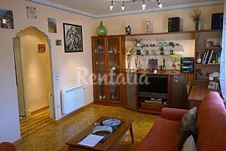 Apartment for rent in Rioja (La) Rioja (La)