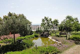 Villa for rent 13 km from the beach Cagliari