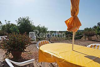 Charming villa with 1 bedroom 6 km from the beach Algarve-Faro