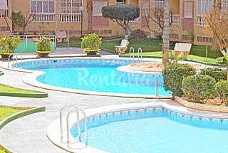 Apartamento en alquiler a 700 m de la playa Alicante